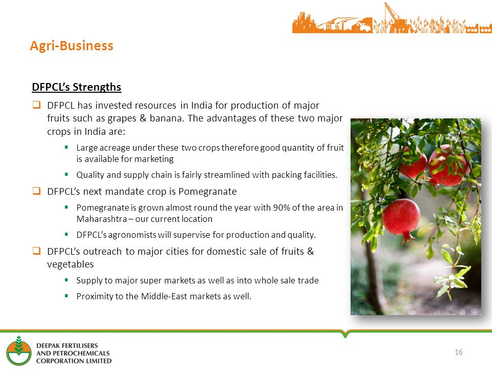 Agri-Business DFPCL's Strengths  DFPCL has invested resources in India for production of major fruits such as grapes & banana.