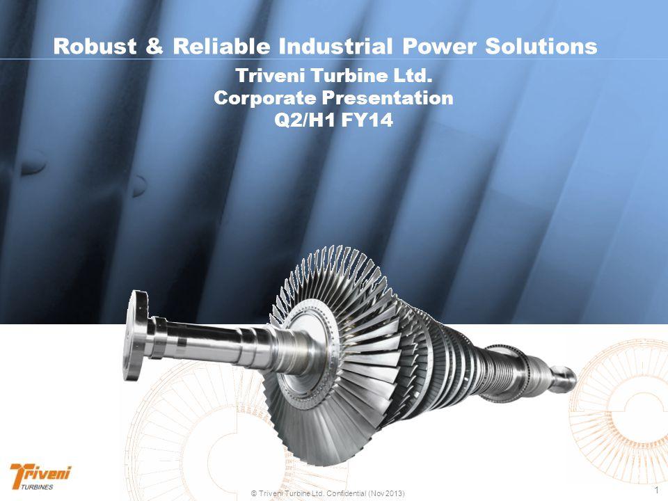 2 © Triveni Turbine Ltd. Confidential (Nov 2013) Snapshot