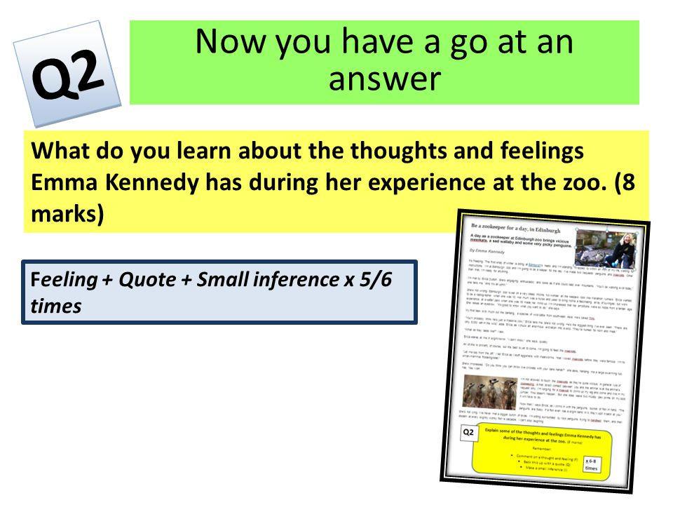 Now you have a go at an answer What do you learn about the thoughts and feelings Emma Kennedy has during her experience at the zoo.