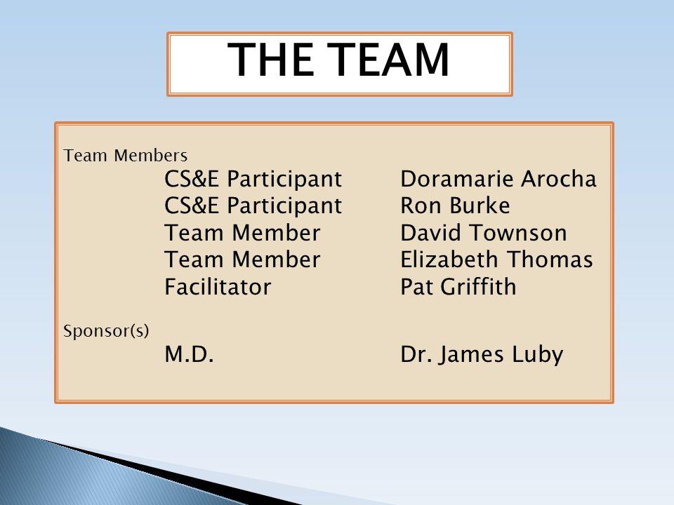 THE TEAM Team Members CS&E ParticipantDoramarie Arocha CS&E ParticipantRon Burke Team MemberDavid Townson Team MemberElizabeth Thomas FacilitatorPat Griffith Sponsor(s) M.D.Dr.