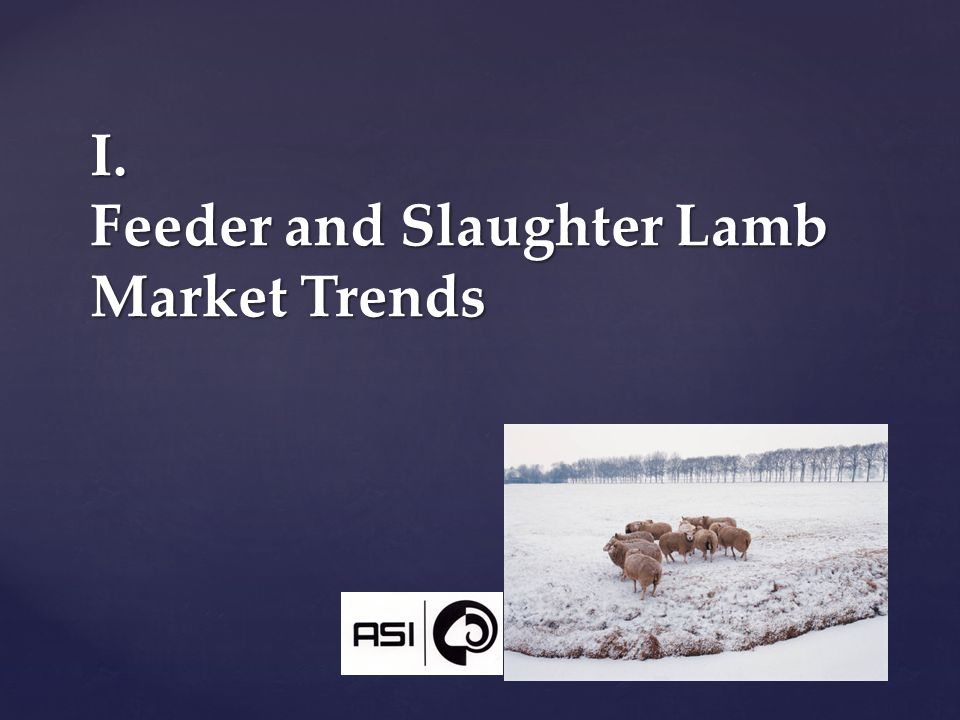 I. Feeder and Slaughter Lamb Market Trends