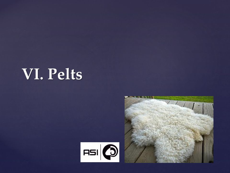 VI. Pelts