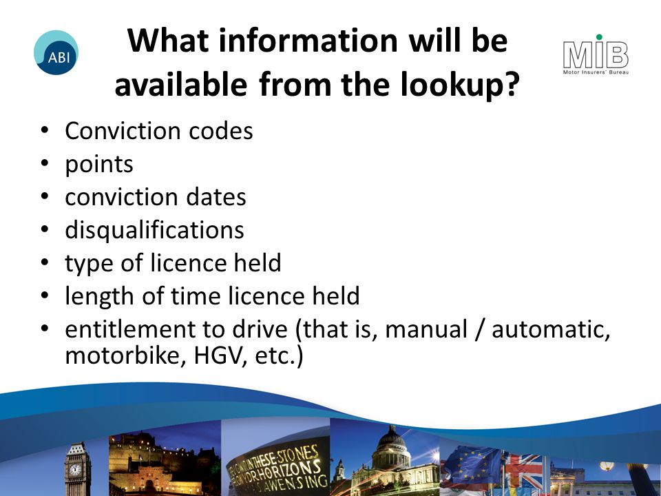 What information will be available from the lookup.