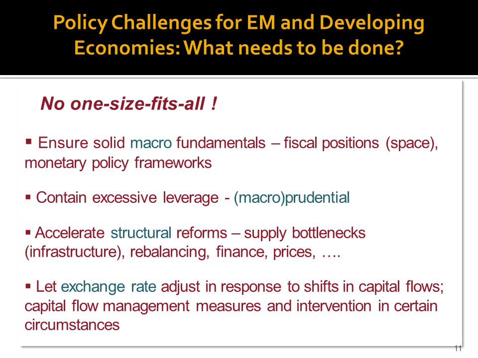 Policy Challenges for EM and Developing Economies: What needs to be done.