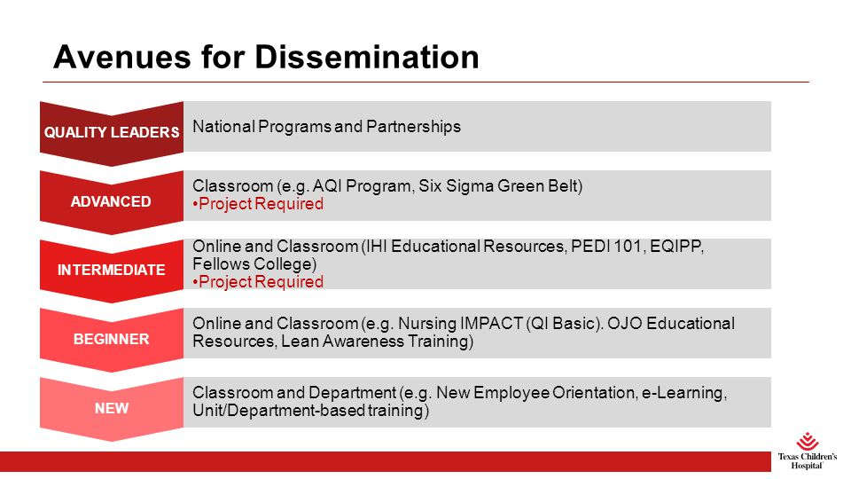 Avenues for Dissemination QUALITY LEADERS National Programs and Partnerships ADVANCED Classroom (e.g.