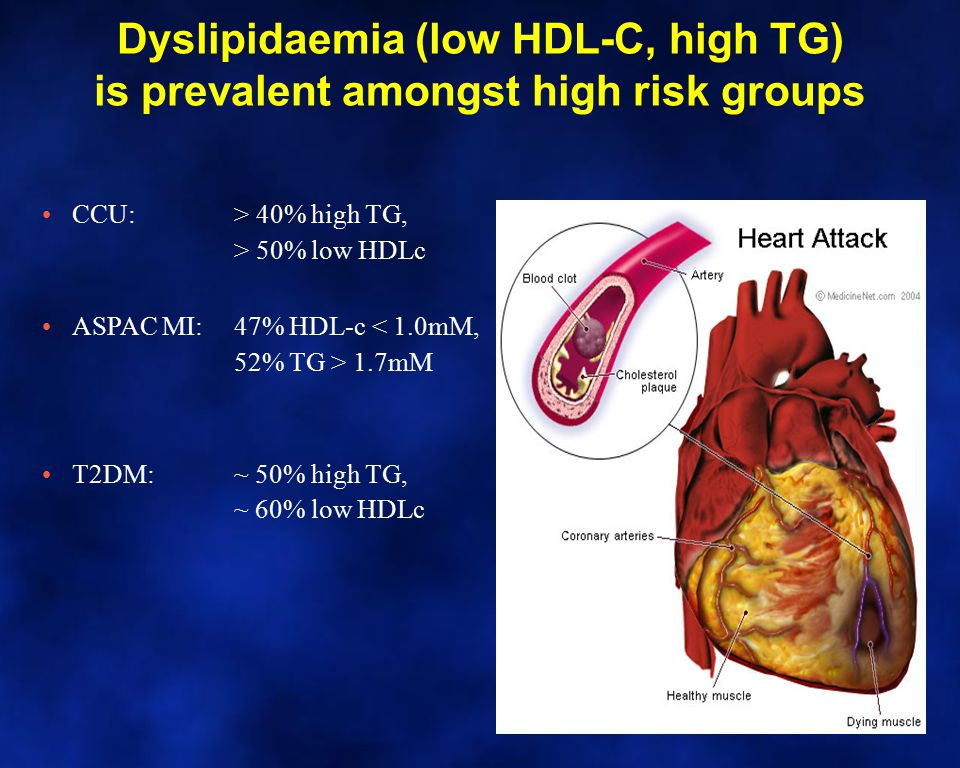 Dyslipidaemia (low HDL-C, high TG) is prevalent amongst high risk groups CCU: > 40% high TG, > 50% low HDLc ASPAC MI: 47% HDL-c 1.7mM T2DM: ~ 50% high