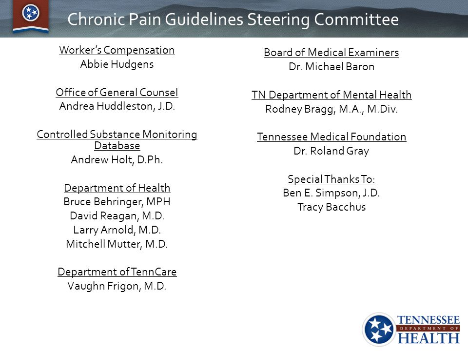 Chronic Pain Guidelines Steering Committee Worker's Compensation Abbie Hudgens Office of General Counsel Andrea Huddleston, J.D. Controlled Substance
