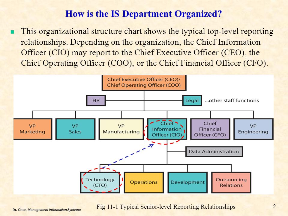 Dr. Chen, Management Information Systems How is the IS Department Organized? 9 Fig 11-1 Typical Senior-level Reporting Relationships This organization