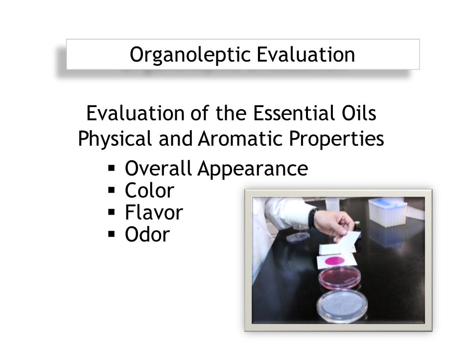  Overall Appearance  Color  Flavor  Odor Organoleptic Evaluation Evaluation of the Essential Oils Physical and Aromatic Properties