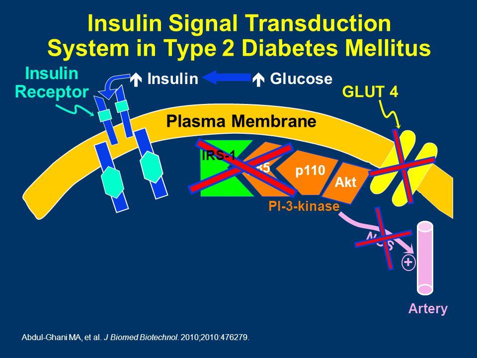 NOS + Artery Insulin Receptor Plasma Membrane p85 p110 Akt Insulin Signal Transduction System in Type 2 Diabetes Mellitus PI-3-kinase IRS-1 GLUT 4  Glucose  Insulin Abdul-Ghani MA, et al.
