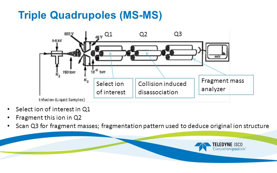 Triple Quadrupoles (MS-MS) Select ion of interest Collision induced disassociation Fragment mass analyzer Q1Q2 Q3 Select ion of interest in Q1 Fragment this ion in Q2 Scan Q3 for fragment masses; fragmentation pattern used to deduce original ion structure