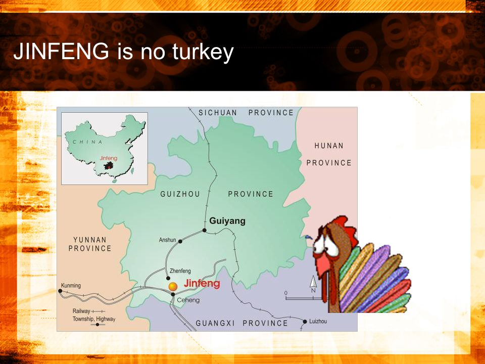 JINFENG is no turkey
