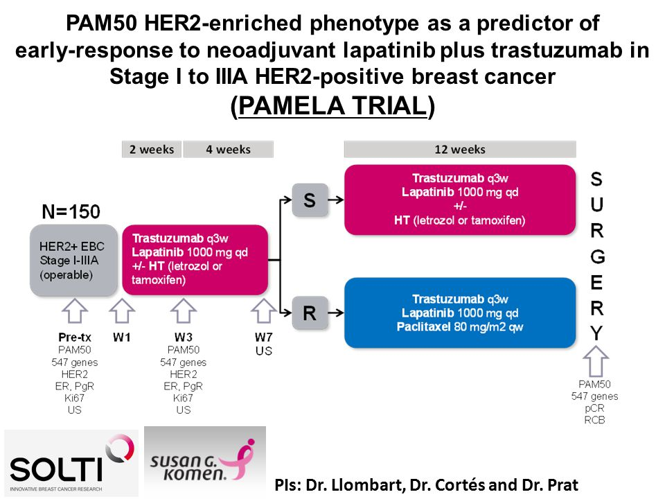 PAM50 HER2-enriched phenotype as a predictor of early-response to neoadjuvant lapatinib plus trastuzumab in Stage I to IIIA HER2-positive breast cancer (PAMELA TRIAL) PIs: Dr.