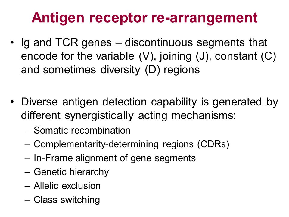 Antigen receptor re-arrangement Ig and TCR genes – discontinuous segments that encode for the variable (V), joining (J), constant (C) and sometimes di