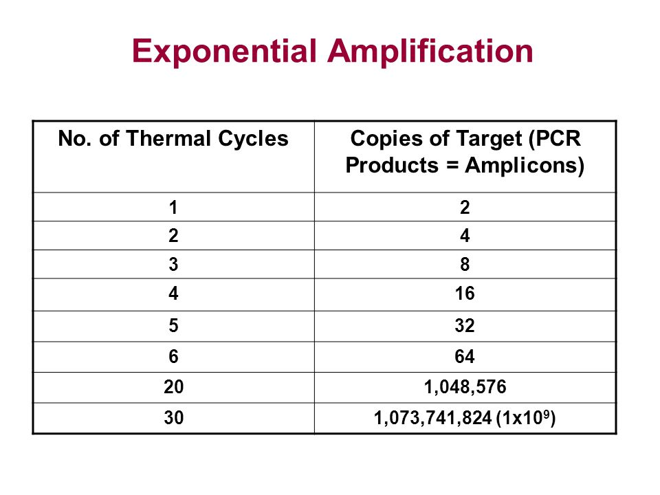 No. of Thermal CyclesCopies of Target (PCR Products = Amplicons) 12 24 38 416 532 664 201,048,576 301,073,741,824 (1x10 9 ) Exponential Amplification
