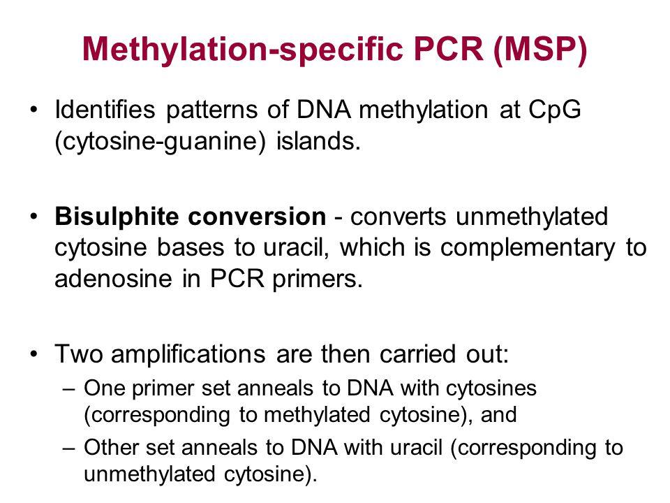 Methylation-specific PCR (MSP) Identifies patterns of DNA methylation at CpG (cytosine-guanine) islands. Bisulphite conversion - converts unmethylated