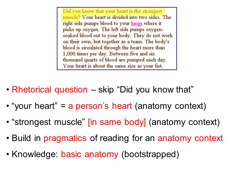 Rhetorical question – skip Did you know that your heart = a person's heart (anatomy context) strongest muscle [in same body] (anatomy context) Build in pragmatics of reading for an anatomy context Knowledge: basic anatomy (bootstrapped)