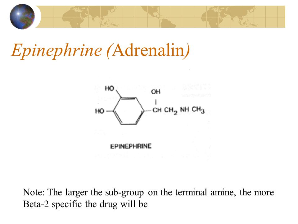 Sympathomimetics Drugs that mimic the actions of the sympathetic neurotransmitters Stimulate Alpha, Beta-1, and Beta-2 receptors Also known as Adrenergics or Catecholamines