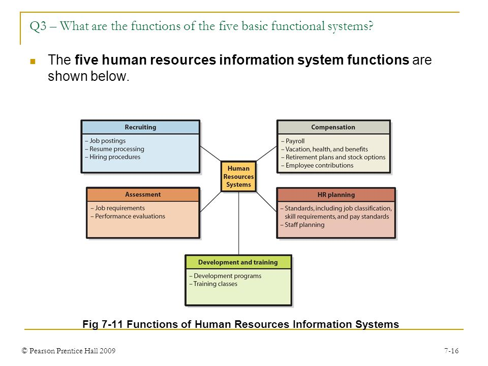 © Pearson Prentice Hall 2009 7-16 Q3 – What are the functions of the five basic functional systems.