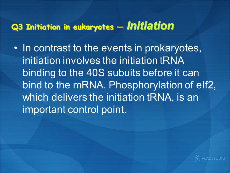 Q3 Initiation in eukaryotes — Initiation In contrast to the events in prokaryotes, initiation involves the initiation tRNA binding to the 40S subuits