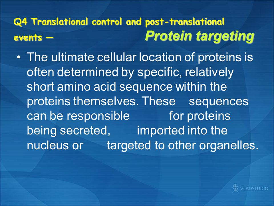 Q4 Translational control and post-translational events — Protein targeting The ultimate cellular location of proteins is often determined by specific,