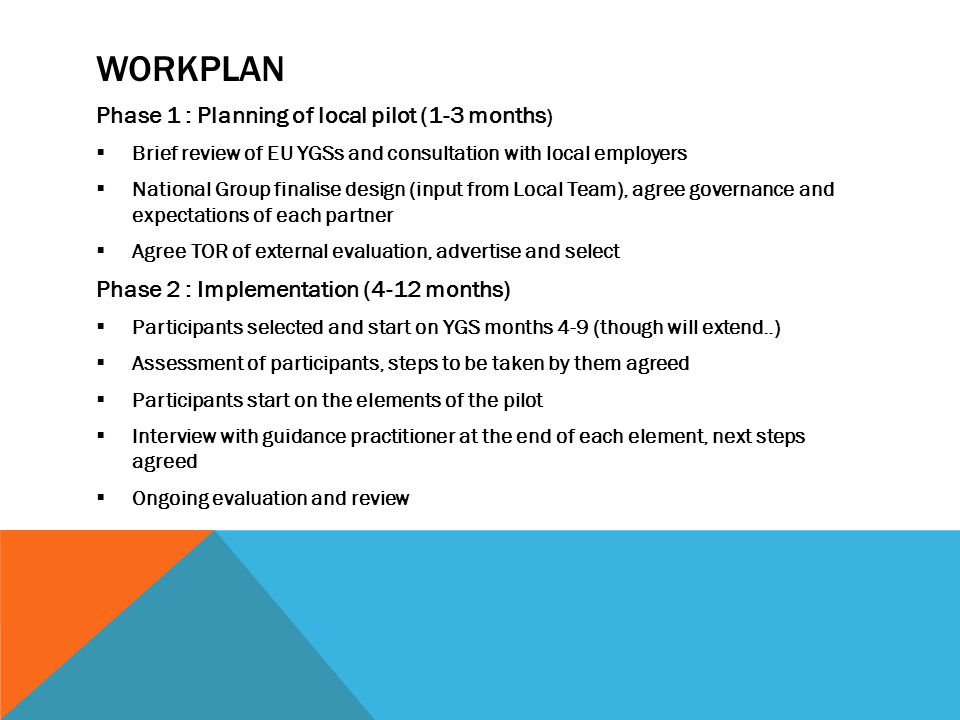 WORKPLAN Phase 1 : Planning of local pilot (1-3 months )  Brief review of EU YGSs and consultation with local employers  National Group finalise des