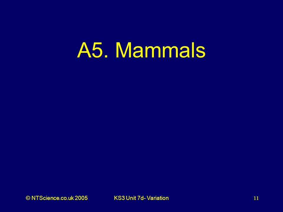 © NTScience.co.uk 2005KS3 Unit 7d- Variation11 A5. Mammals