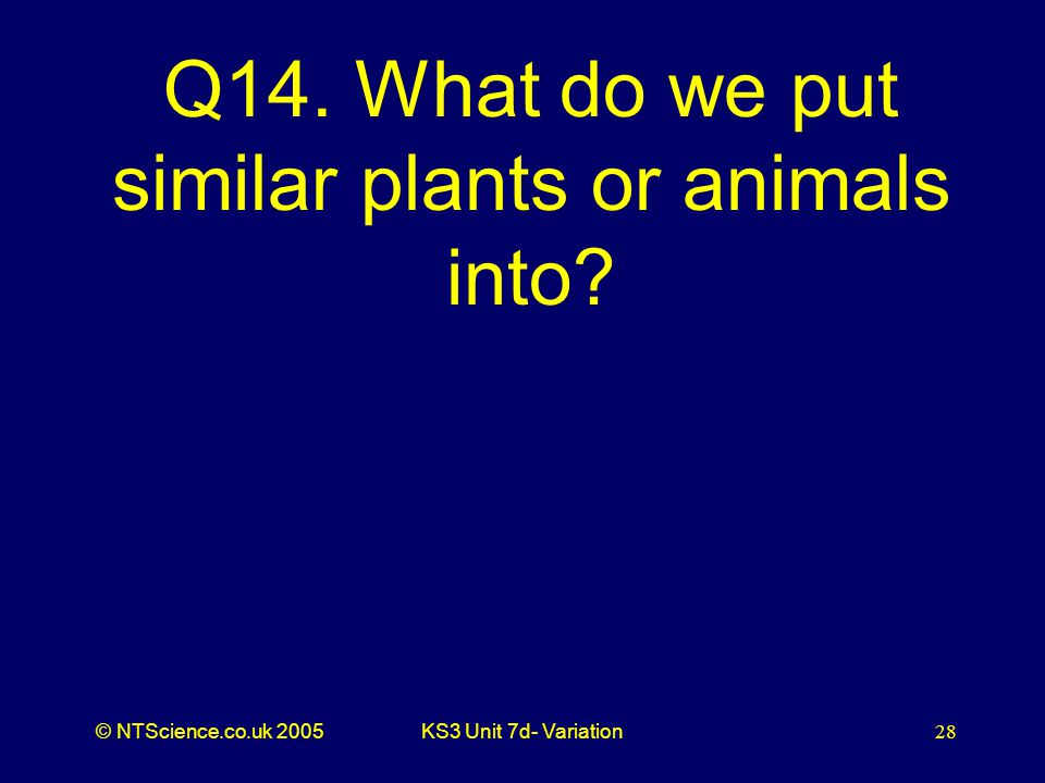 © NTScience.co.uk 2005KS3 Unit 7d- Variation28 Q14. What do we put similar plants or animals into?
