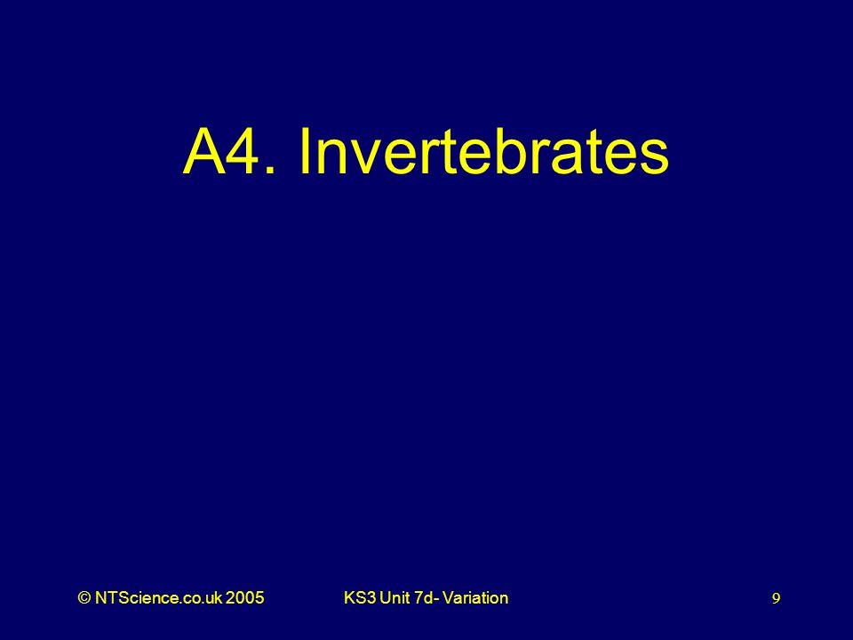 © NTScience.co.uk 2005KS3 Unit 7d- Variation9 A4. Invertebrates