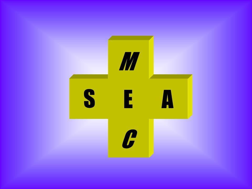 M C S E A