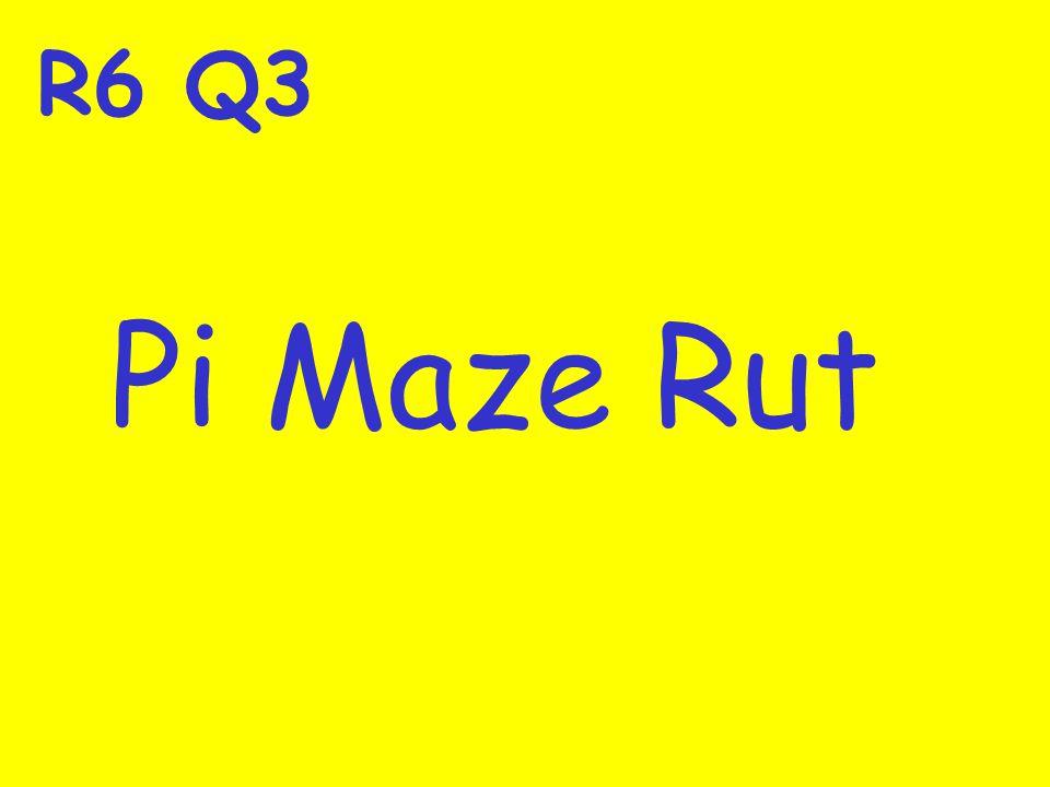 R6 Q3 Pi Maze Rut