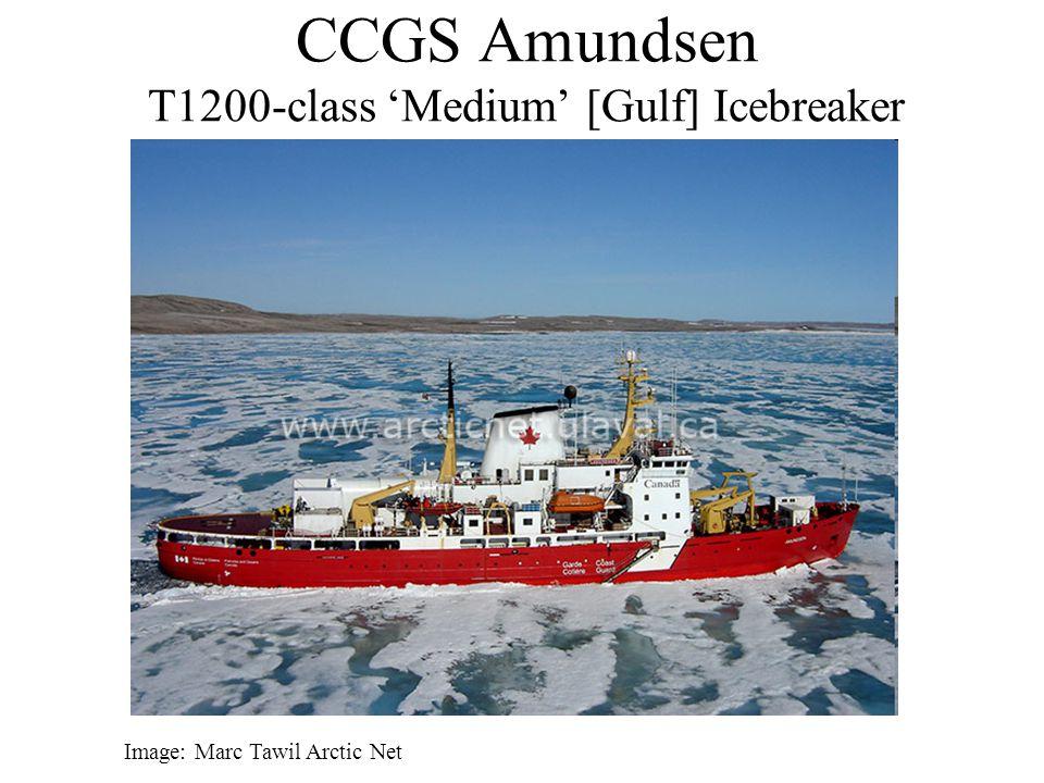 CCGS Amundsen T1200-class 'Medium' [Gulf] Icebreaker Image: Marc Tawil Arctic Net
