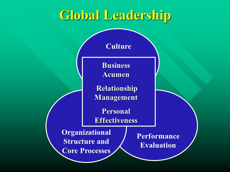 Global Leadership Business Acumen Relationship Management Relationship Management Personal Effectiveness Culture Performance Evaluation Organizational Structure and Core Processes