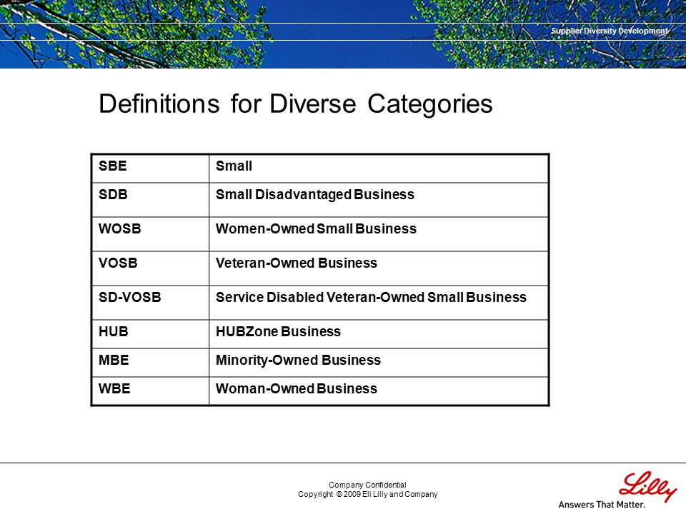Supplier Diversity Development Company Confidential Copyright © 2009 Eli Lilly and Company Definitions for Diverse Categories SBESmall SDBSmall Disadvantaged Business WOSBWomen-Owned Small Business VOSBVeteran-Owned Business SD-VOSBService Disabled Veteran-Owned Small Business HUBHUBZone Business MBEMinority-Owned Business WBEWoman-Owned Business