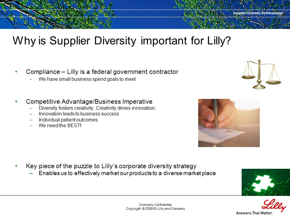 Supplier Diversity Development Company Confidential Copyright © 2009 Eli Lilly and Company Why is Supplier Diversity important for Lilly.