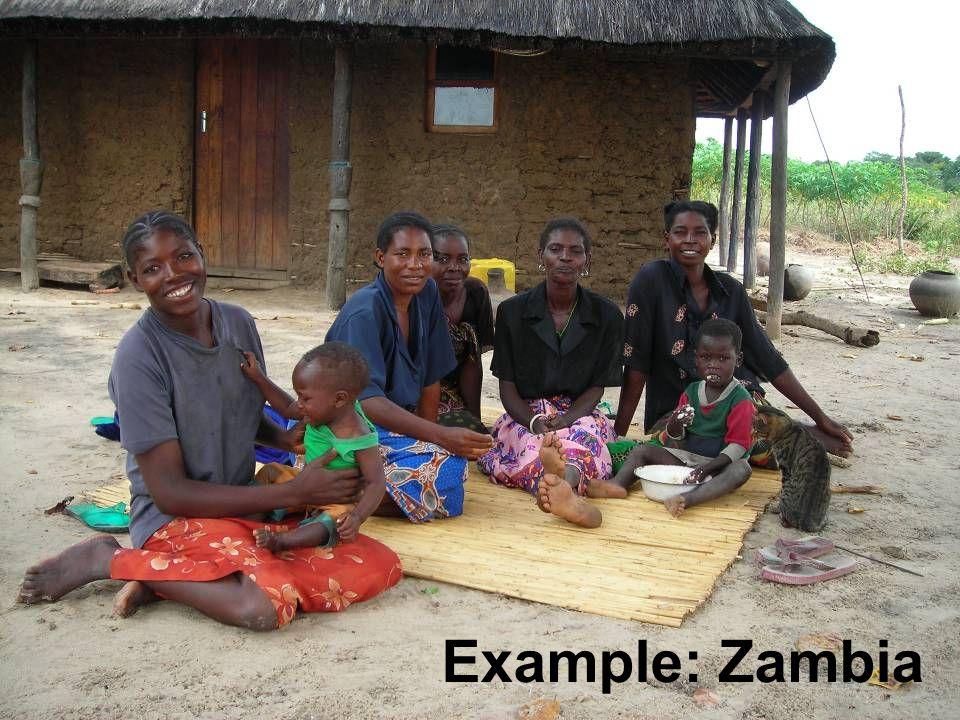 Example: Zambia