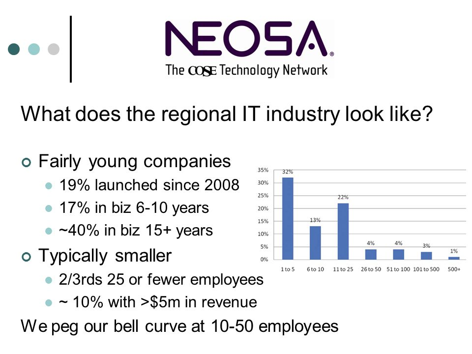 What does the regional IT industry look like? Fairly young companies 19% launched since 2008 17% in biz 6-10 years ~40% in biz 15+ years Typically sma