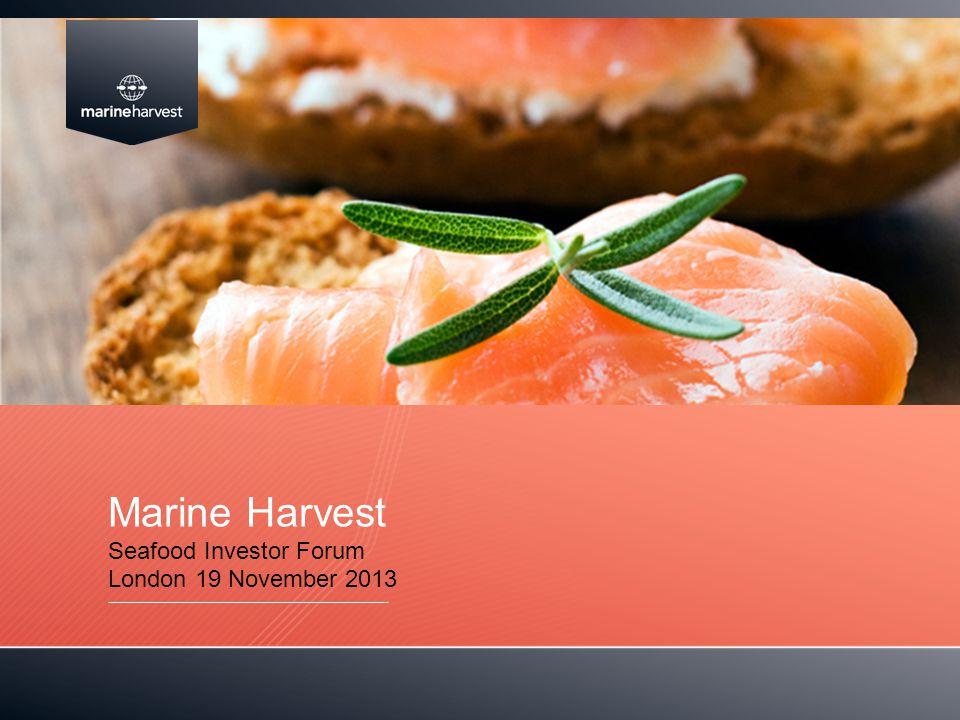 Marine Harvest Seafood Investor Forum London 19 November 2013