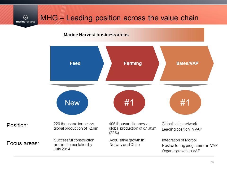 MHG – Leading position across the value chain 16 FeedFarmingSales/VAP 220 thousand tonnes vs.