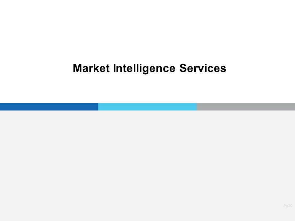 Pg 20 Market Intelligence Services
