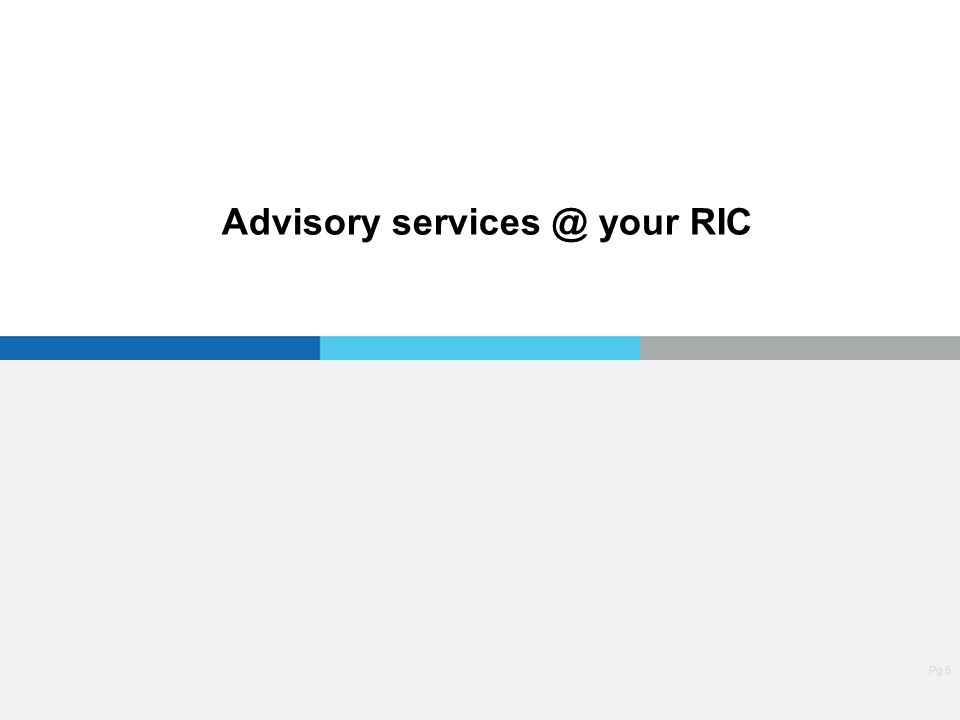 Pg 5 Advisory services @ your RIC