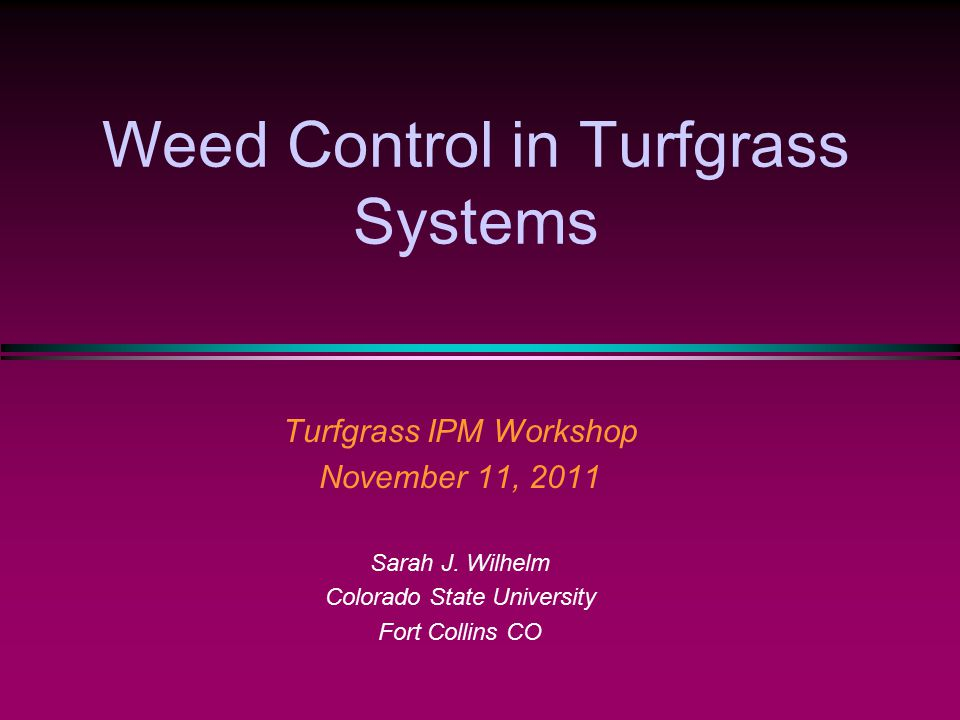 Weed Control in Turfgrass Systems Turfgrass IPM Workshop November 11, 2011 Sarah J. Wilhelm Colorado State University Fort Collins CO