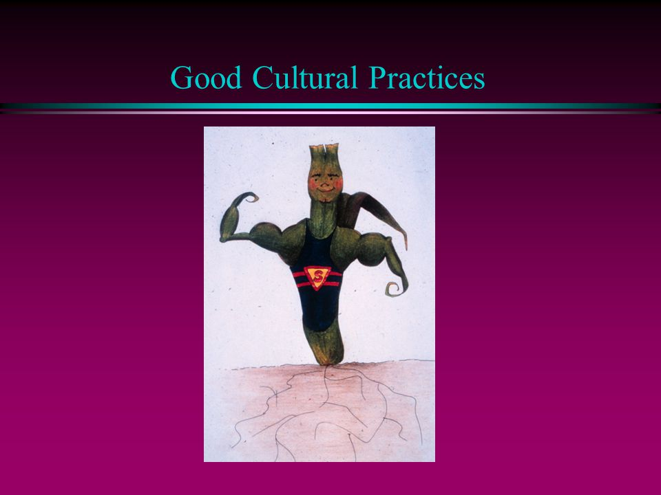 Good Cultural Practices