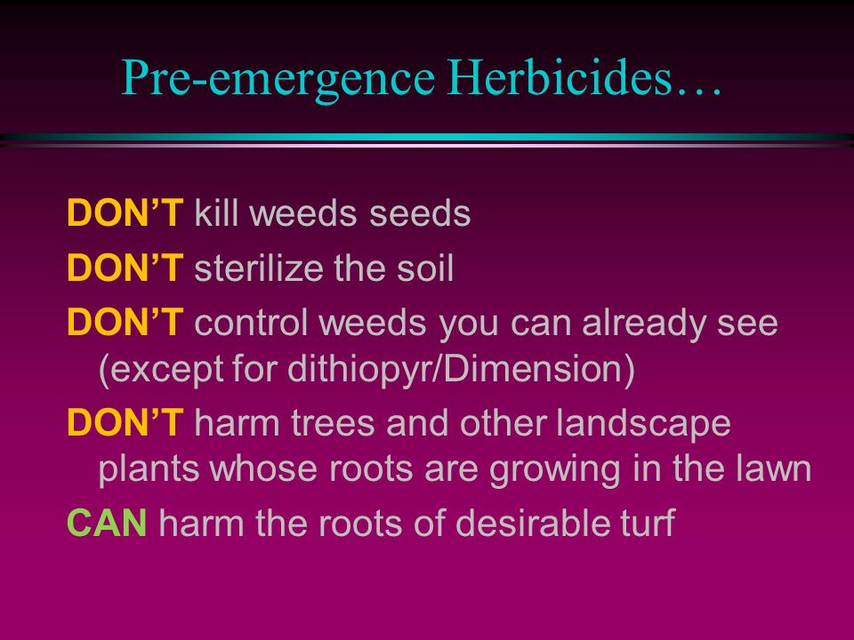 Pre-emergence Herbicides… DON'T kill weeds seeds DON'T sterilize the soil DON'T control weeds you can already see (except for dithiopyr/Dimension) DON