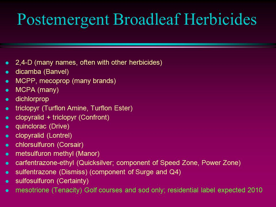 Postemergent Broadleaf Herbicides l 2,4-D (many names, often with other herbicides) l dicamba (Banvel) l MCPP, mecoprop (many brands) l MCPA (many) l dichlorprop l triclopyr (Turflon Amine, Turflon Ester) l clopyralid + triclopyr (Confront) l quinclorac (Drive) l clopyralid (Lontrel) l chlorsulfuron (Corsair) l metsulfuron methyl (Manor) l carfentrazone-ethyl (Quicksilver; component of Speed Zone, Power Zone) l sulfentrazone (Dismiss) (component of Surge and Q4) l sulfosulfuron (Certainty) l mesotrione (Tenacity) Golf courses and sod only; residential label expected 2010