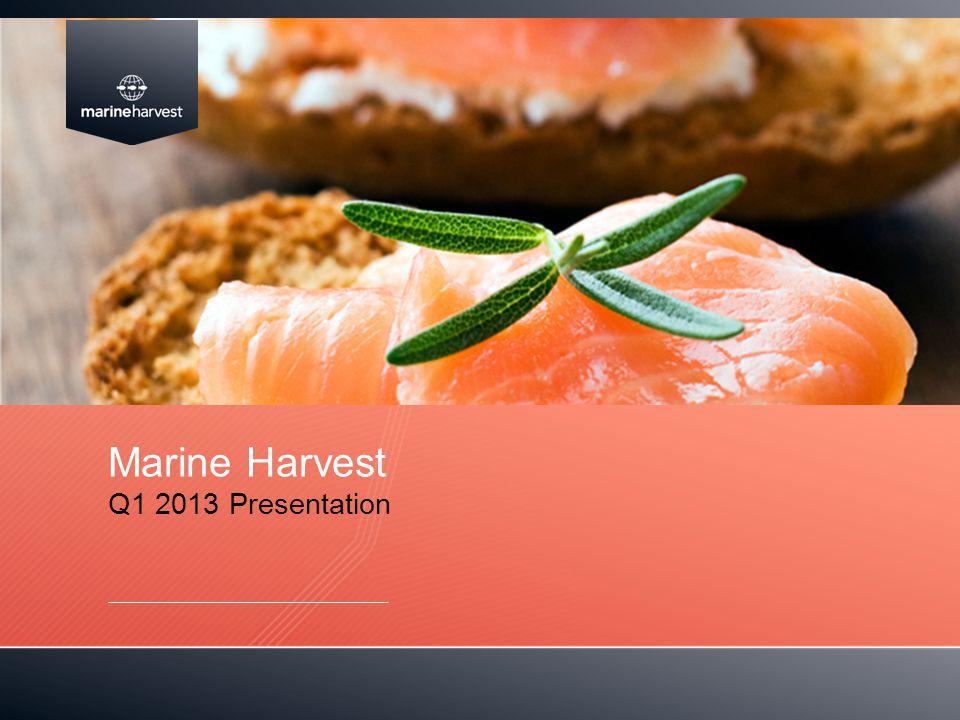 Marine Harvest Q1 2013 Presentation