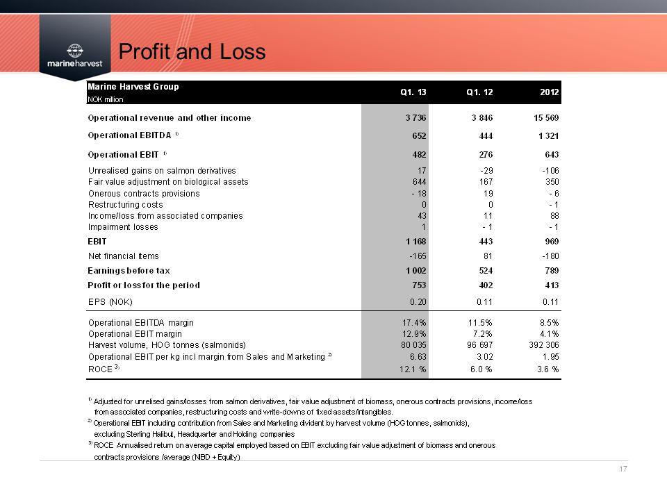 Profit and Loss 17