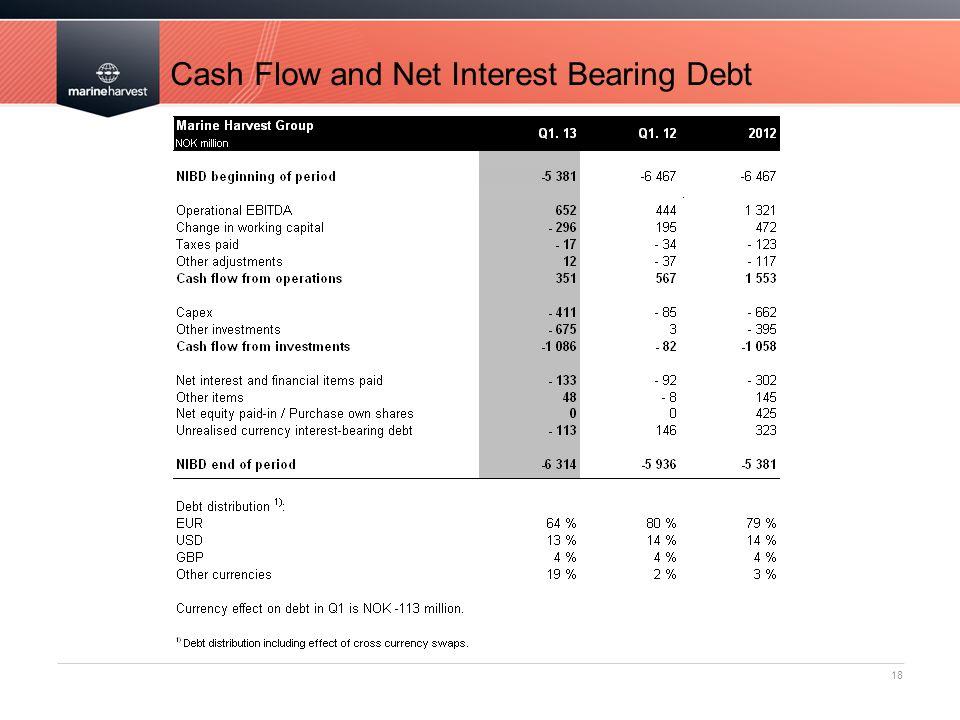 Cash Flow and Net Interest Bearing Debt 18