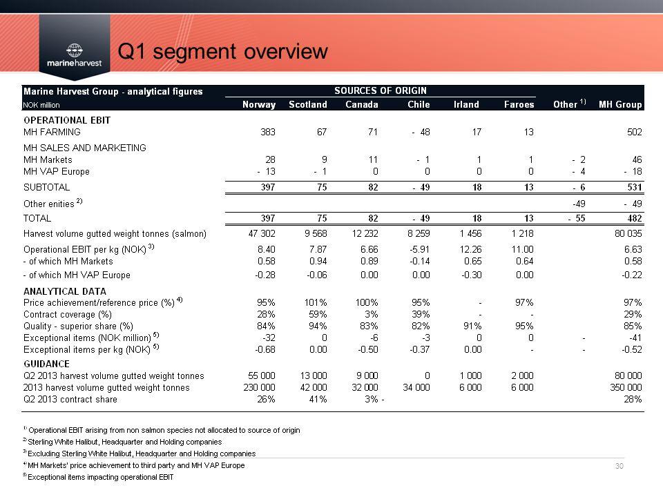 Q1 segment overview 30