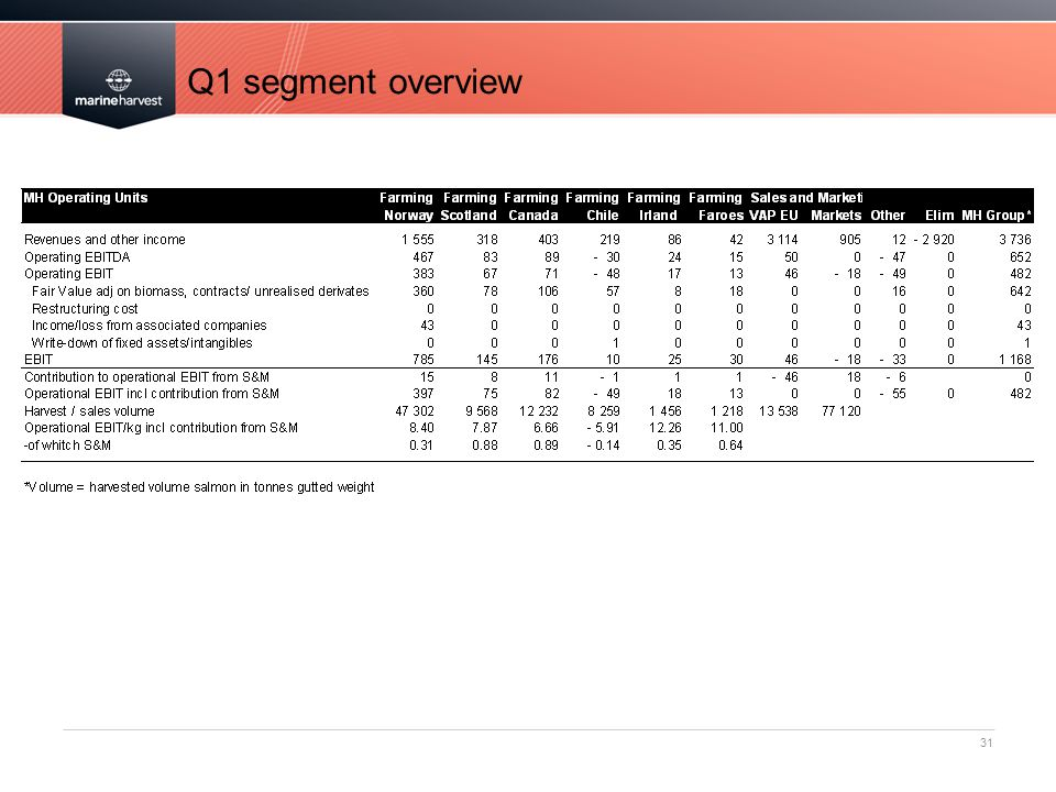 Q1 segment overview 31